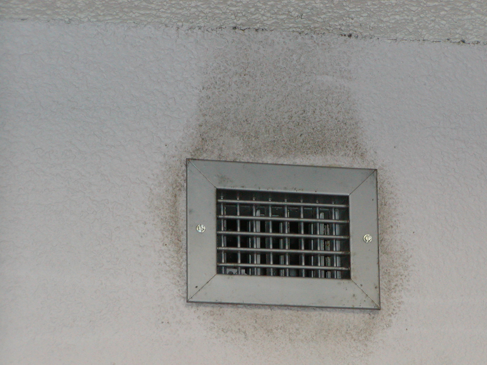 Fantastic Black Mold In Vents Cr83 Roccommunity